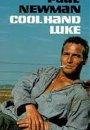 Nieugięty Luke
